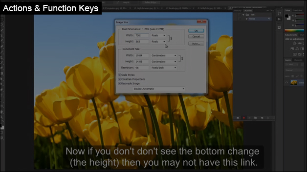 Actions & Function Keys